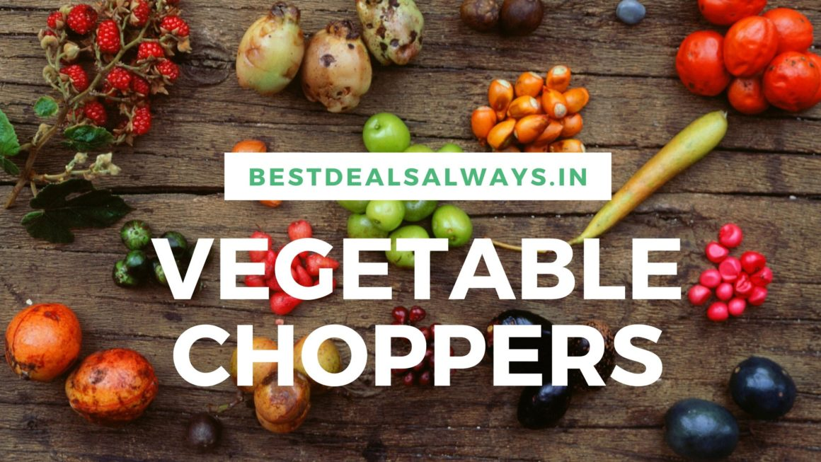 Top 4 Best Vegetable Chopper for Kitchen in India 2021